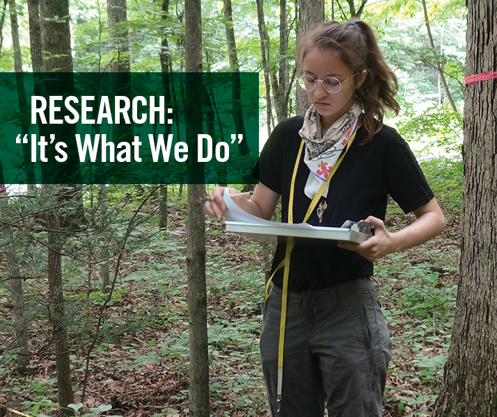 """Research: """"It's What We Do"""""""