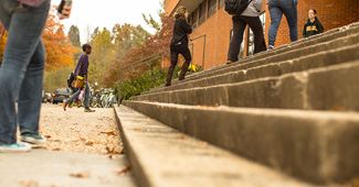 Students going up steps