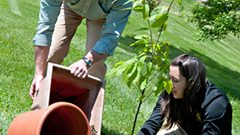 Hollins Collaborates with American Chestnut Foundation to Plant Trees on Campus