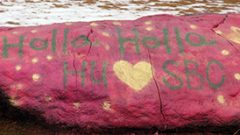 Hollins Announces Open House Sessions for Current Sweet Briar Students