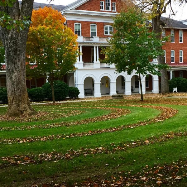 leaf circles front quad