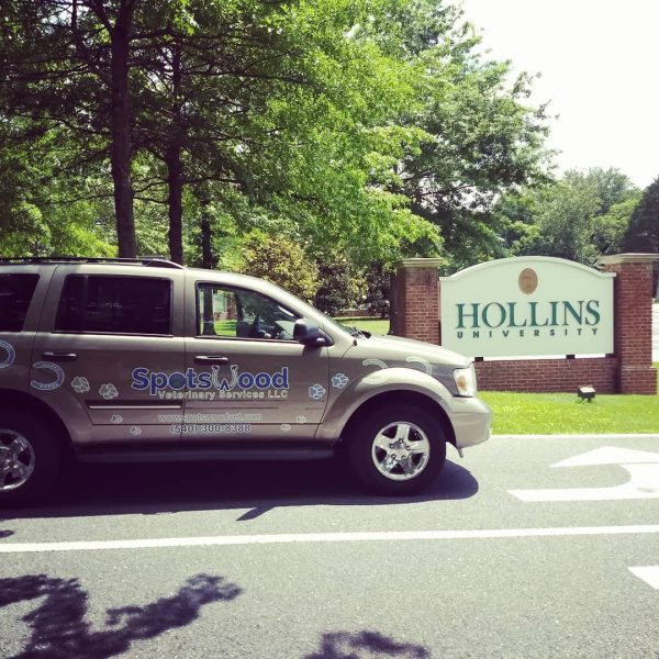 Photo of SUV with alumna returning to Hollins