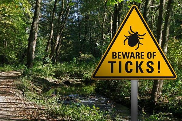 Beware of Ticks Sign