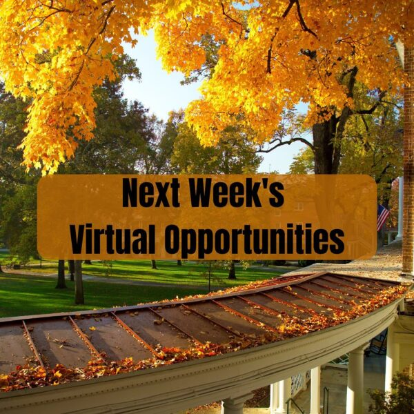 Virtual opportunities