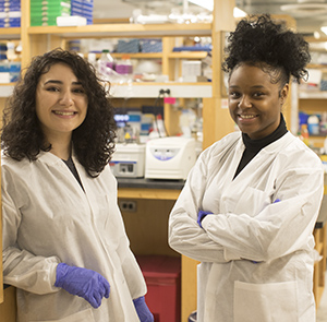 Student interns at NYU Langone Health