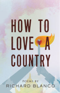 """""""How to Love a Country"""" Book Cover"""